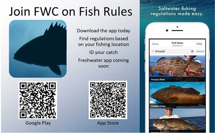 Fishing Rules app
