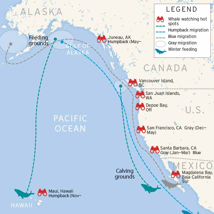 West Coast whale watching map