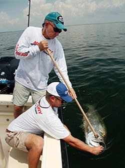 Photo of anglers getting a tarpon DNA sample