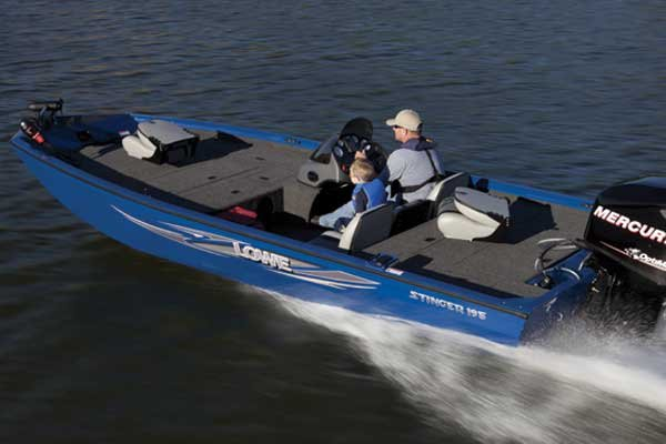 Photo of a Multi-species Boat - Lowe Stinger 195