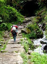 Photo of the trail to Machu Picchu