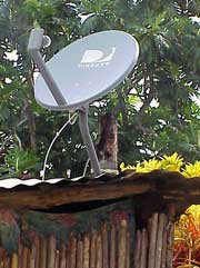 Photo of a television satellite dish atop hut