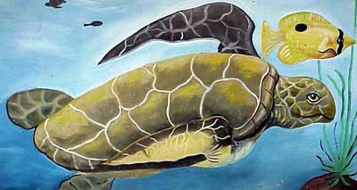 Photo of turtle mural