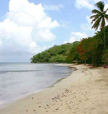 Photo of secluded beach of Providencia