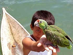 Photo of a young Guatemalan boy holding a parrot