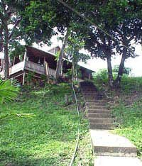 Photo of steep steps to Dave's and Donna's house