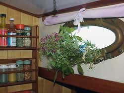 Photo of herbs bundled in Ithaka's galley