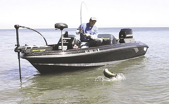 Fall prime time to fish lake erie fishing boatus for Best freshwater fishing boats
