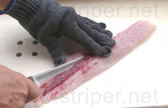 Photo of how to fillet a striper, Step 13