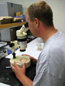 A student analyst examines a specimen under a microscope.