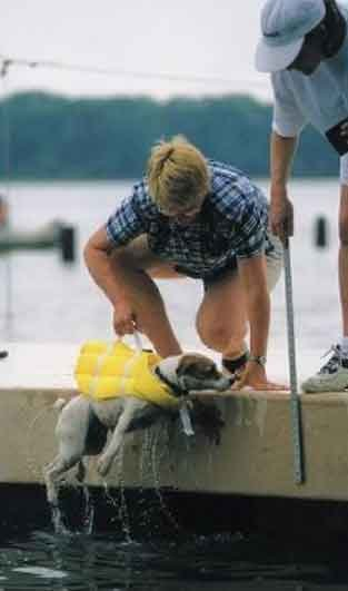 This image depicts a woman lifting her dog out of the water from the dock using a lifting handle attached to the doggie life vest.