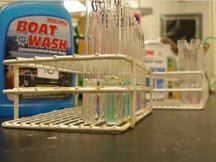 A group of test tubes wait to be analyzed in the lab.