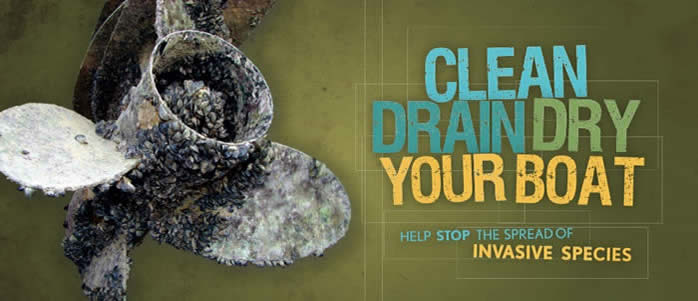 Invasive Species - Clean and Dry Your Boat