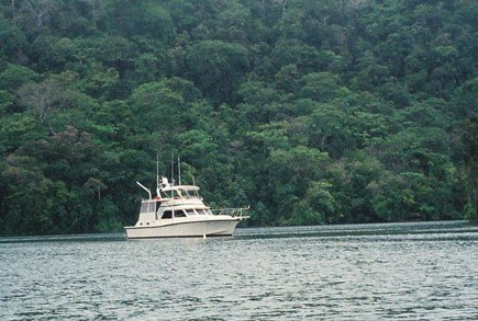 Desperado at anchor in the Rio Dulce, Guatemala