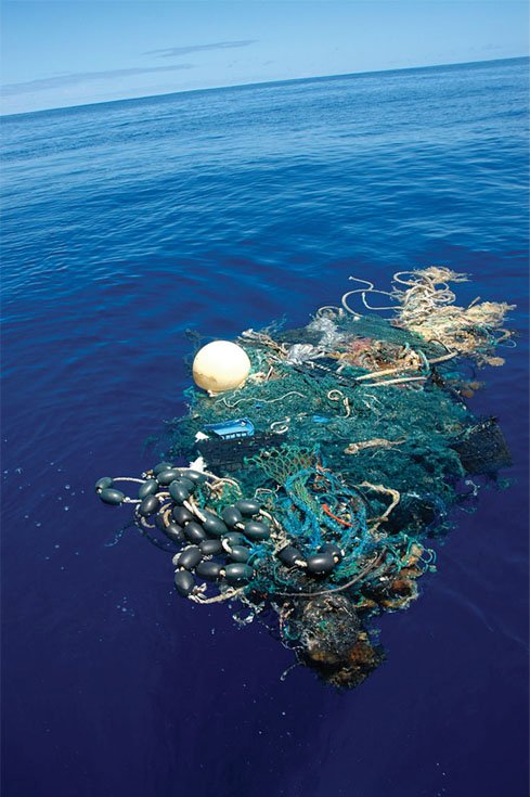 Photo of Derelict fishing gear from Pacific fisheries