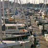 Thumbnail photo of boats at a dock