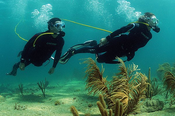 Photo of two men scuba diving using Brownie's A compressor
