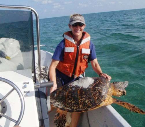 Photo of a sea turtle rescue