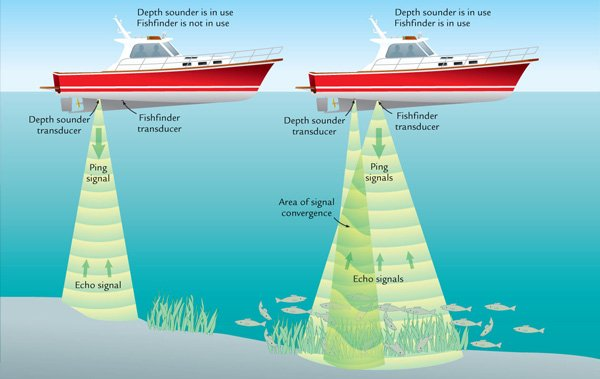 Illustration of a depth sounder and fishfinder transducer