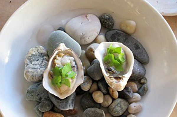 Photo of oysters from the Willow Inn