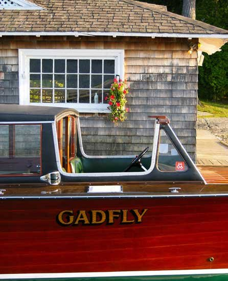 Photo of the Gadfly