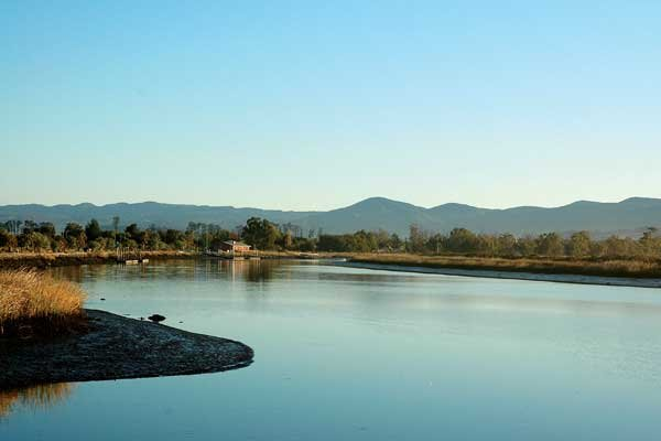 Photo of Napa River in California's wine country