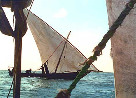 Photo of sailing dhows off the Horn of Africa