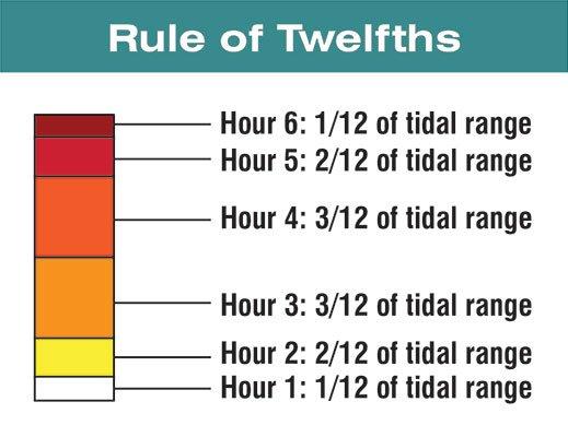 Illustration of the Rule of Twelves