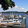 Thumbnail photo of Friday Harbor in the San Juan Islands
