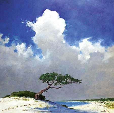 Photo of pine on Horn Island Billy Solitario painting