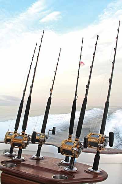 Photo of fishing rods and reels