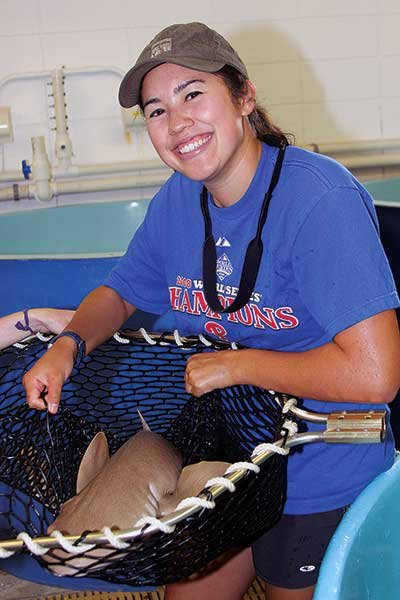 Photo of shark behavioral program intern Lindsay Gaskins