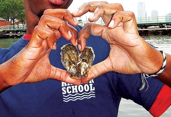 Photo I heart oysters