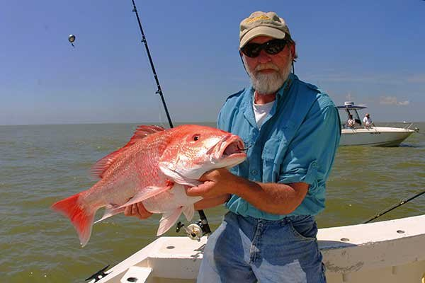 Photo of a red snapper catch