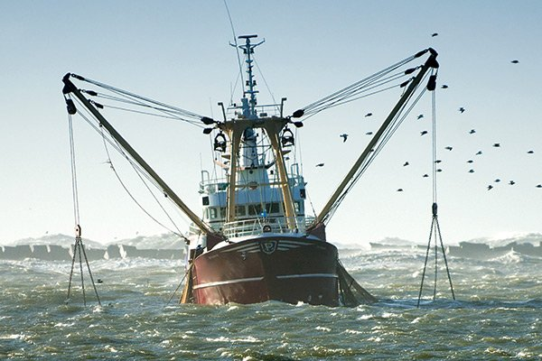40 years of fish management boatus magazine for What is commercial fishing