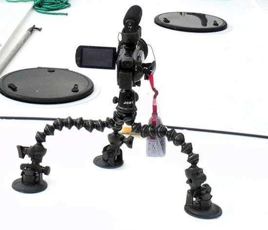Spider tripod with suction cups