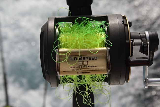 Tangled monofilament fishing line