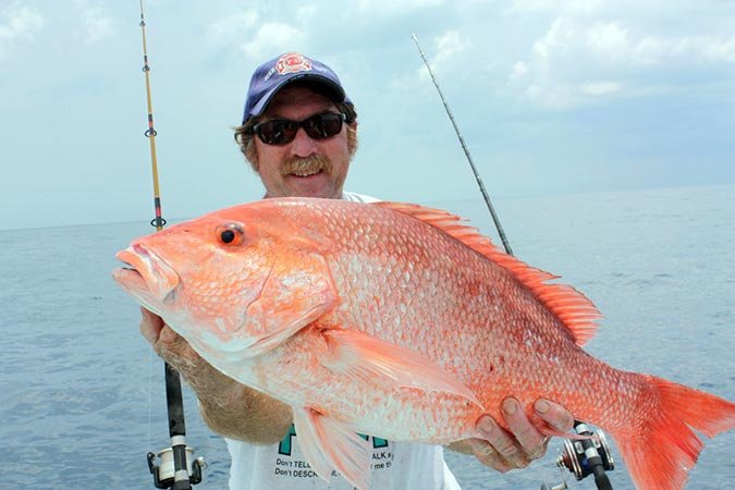 Red snapper caught offshore of Anna Maria Island