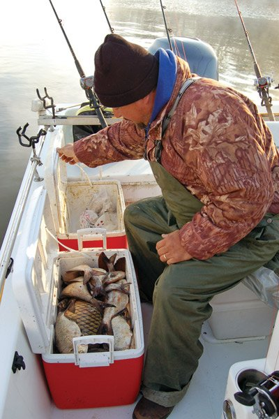 Photo of Capt. Mike Fitchett and the bait he uses for catching catfish.