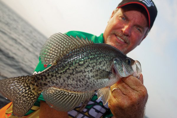 Photo of Dennis Tietje with one of the Toledo Bend crappie
