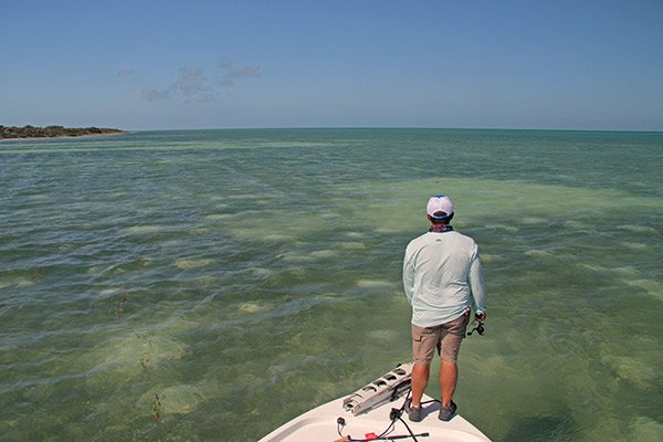 Photo of angler fishing the Florida flats