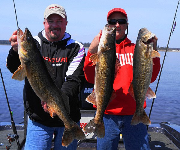 Photo of a Green Bay walleye catch