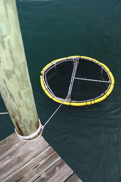 Photo of live bait pens in the water
