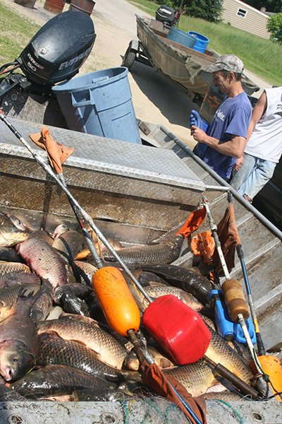 Photo of Mike Johnson unloading his haul of fish