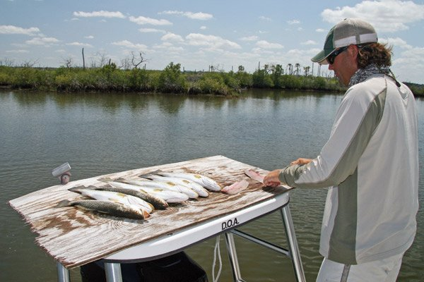 Photo of Capt. William Toney filleting speckled trout