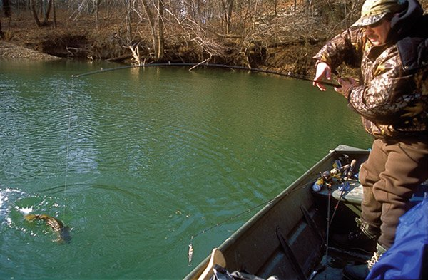 Photo of Ron Duncan catching a smallmouth bass