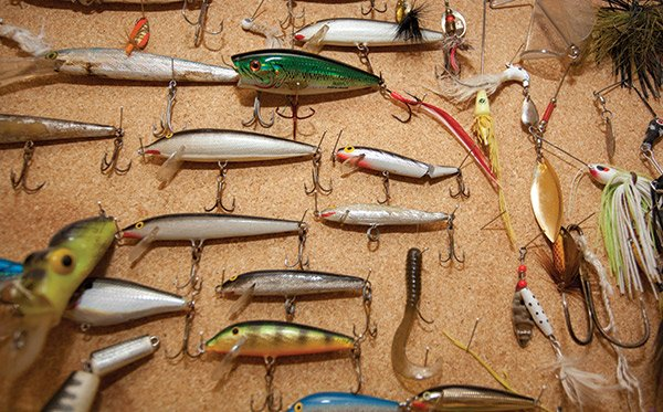 Photo of Rapala Lures extracted from patients