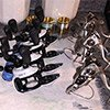 Thumbnail photo of cleaned fishing reels