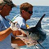 Thumbnail photo of two anglers hauling in a white marlin