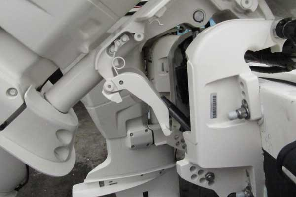 Photo of an Evinrude 2 boat engine with transom saver